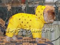 Йоркширский терьер, сезон зима, цвет ткани желтый, украшена пайетками бабочки
