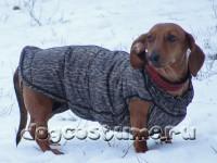 Модель Ириса, такса, сезон - зима, ткань цвета - леопард