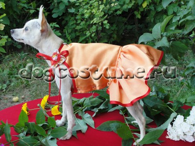 летнее платье Рыжик