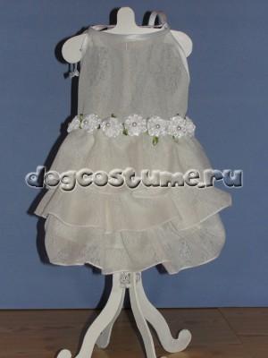 летнее платье    Жасминка
