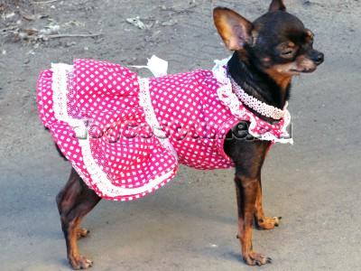летнее платье Горошки